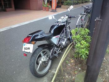 CA3A0023-1.JPG
